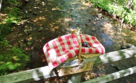 Delectable picnic basket by the creek