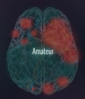 Amateur Brain