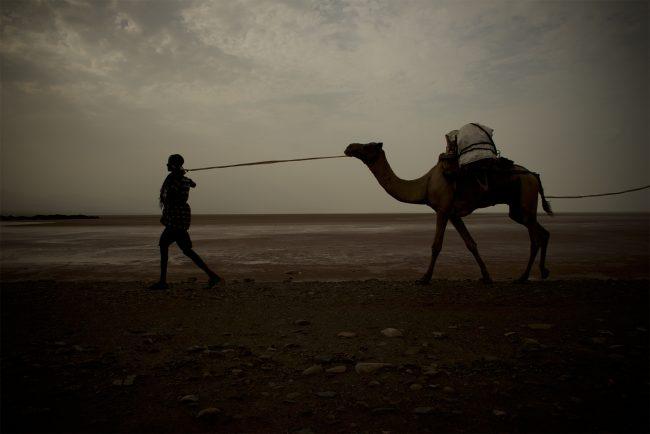 A salt caravan near Hamedela © Emanuel Luttersdorfer