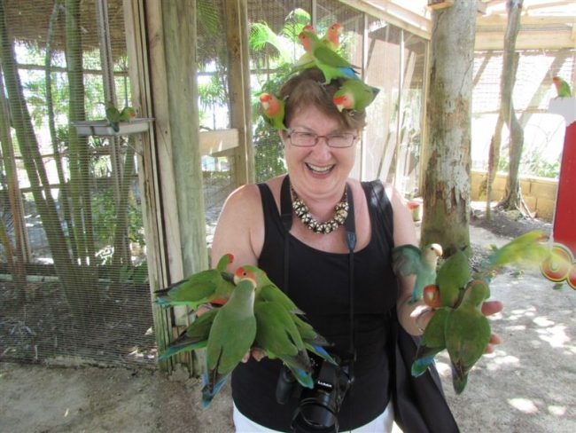 Sandra and The Birds at Ocean World