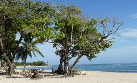 The Dominican  Republic: Its Amazing North Coast
