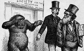 The Racist Underpinnings of Scientific Evolution