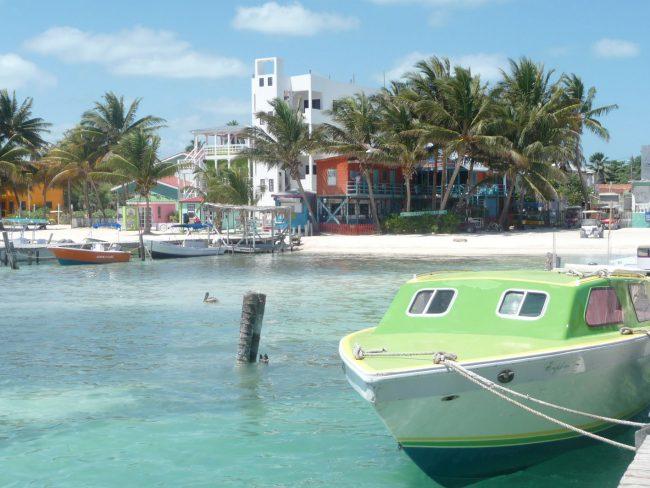 Caye Shore