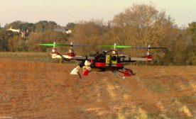 Flying quadcopter drone - agriculture farming