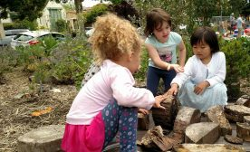 Learning in the Community Garden