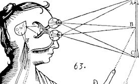 Nurturing and Nourishing Your Pineal Gland To Open Your Third Eye