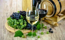 Bilingual Wines!