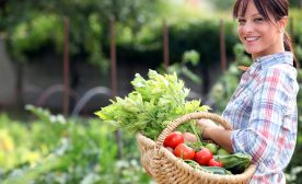 7 Proven Steps That Make Your Vegetable Garden Amazing