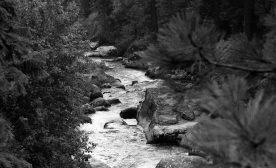 Tarmac Meditations: Haiku # 4