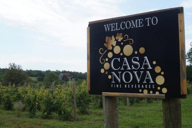 Case Nova Fine Beverages