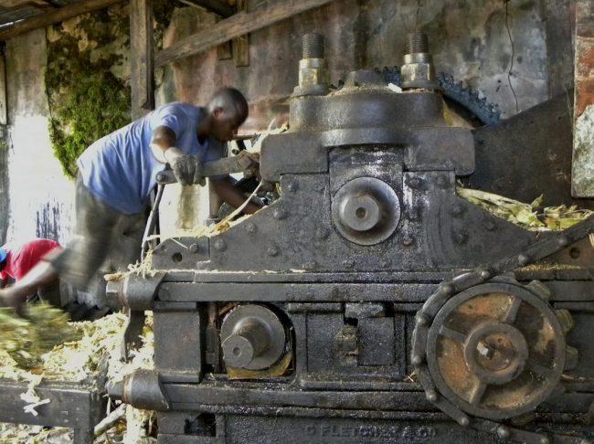 Cutting the Cane (Grenada)