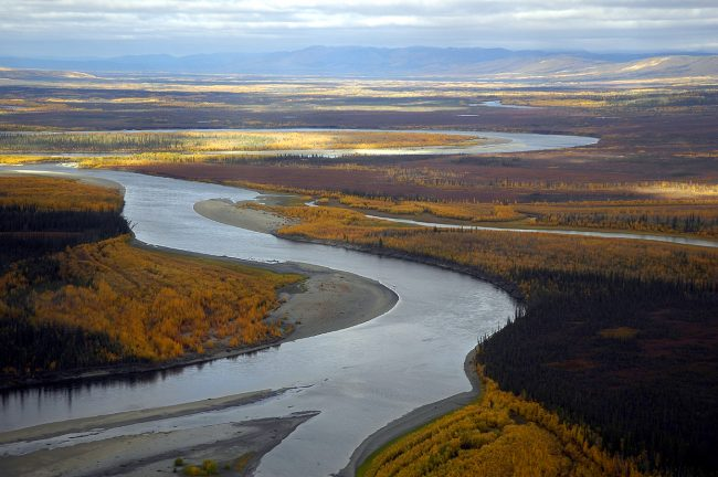 Koyukuk River in autumn